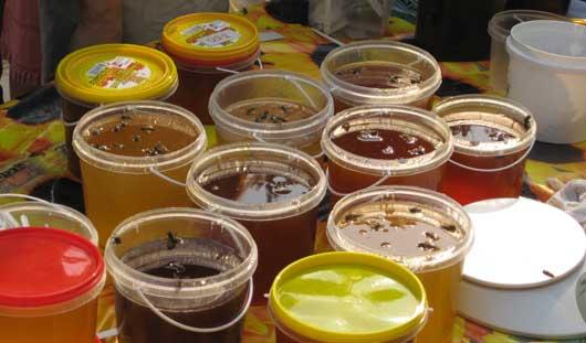 Из-за холодного июля в Ижевске меда соберут меньше, чем планировали