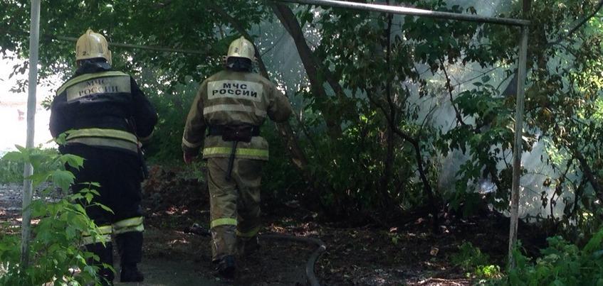 Пять раз за сутки выезжали пожарные Удмуртии для тушения тополиного пуха