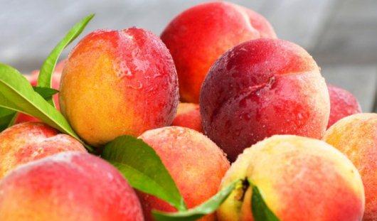 Россия хочет ввести запрет на ввоз фруктов из Греции