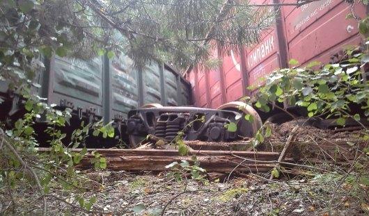 В Удмуртии с рельсов сошел поезд