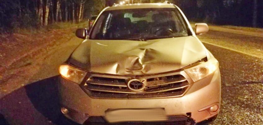 Водитель «Тойоты» насмерть сбил пешехода под Ижевском