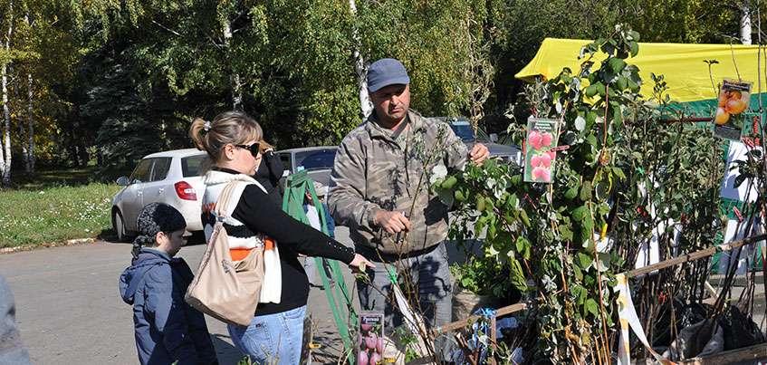 Когда закладывать плодовый сад?