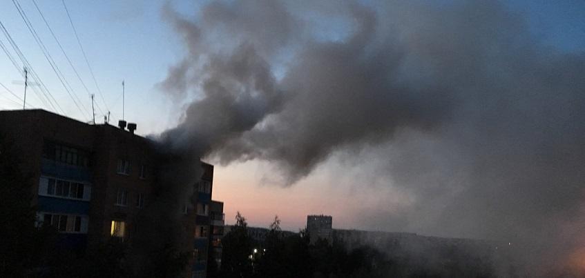 В Ижевске сгорела квартира, в которой разводили китайских хохлатых