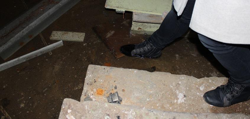 В Ижевске управляющую компанию оштрафовали за насекомых и запах канализации в квартирах