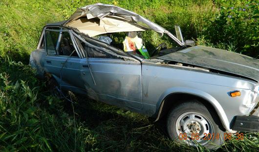 Пассажир «четверки» погиб в ДТП с лосем на трассе Юкаменское - Ижевск