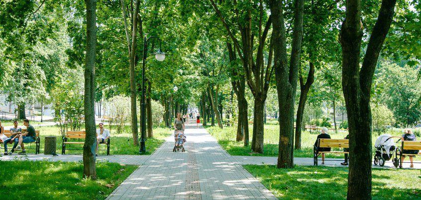 Погода в Ижевске: будни будут солнечными и теплыми