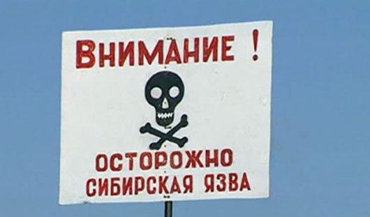 В Татарстане на границе с Удмуртией произошла вспышка сибирской язвы