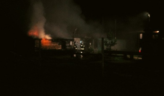 При пожаре в парке Кирова в Ижевске погибли 6 лошадей