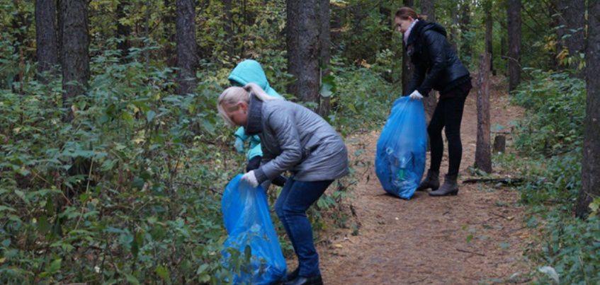 Городской субботник прошел в лесопосадке у ТРК «Столица» в Ижевске
