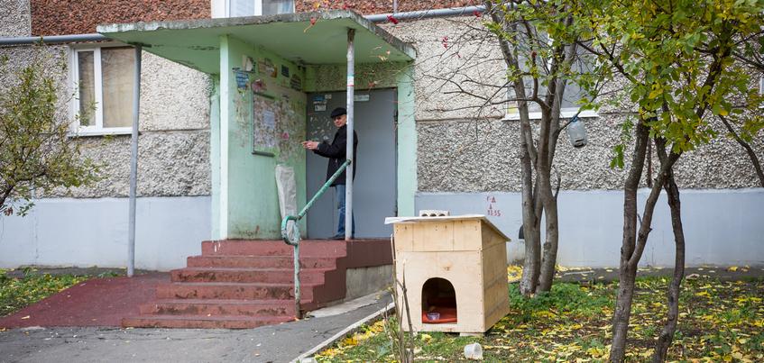 Дом для Черныша: у подъезда многоэтажки в Ижевске установили конуру для бездомного пса