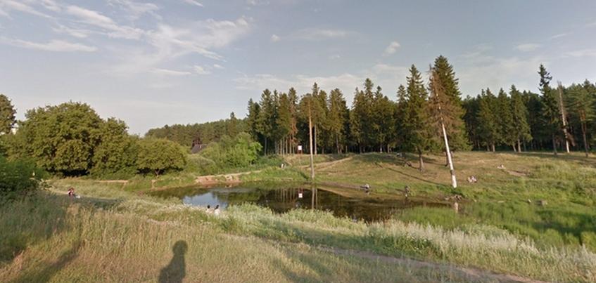 Парк на улице Драгунова в Ижевске могут благоустроить в 2019 года