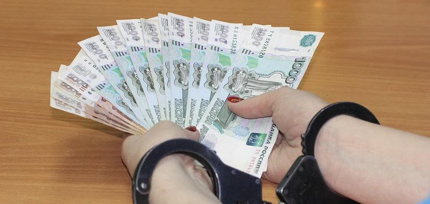Директора предприятия в Удмуртии осудят за уклонение от налогов на 21 млн рублей