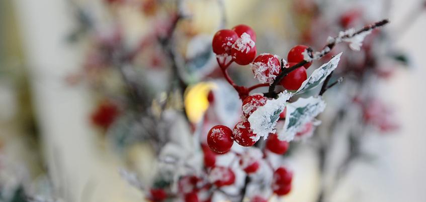 Погода в Ижевске: похолодание до -17°С ожидают к концу недели