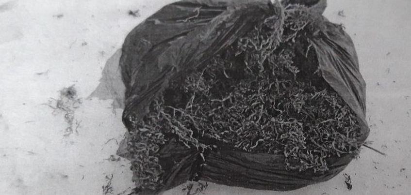 Более килограмма марихуаны нашли в машине нетрезвого жителя Ижевска