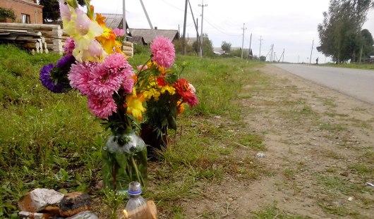 Под колесами авто в Глазовском районе могла оказаться еще одна девочка