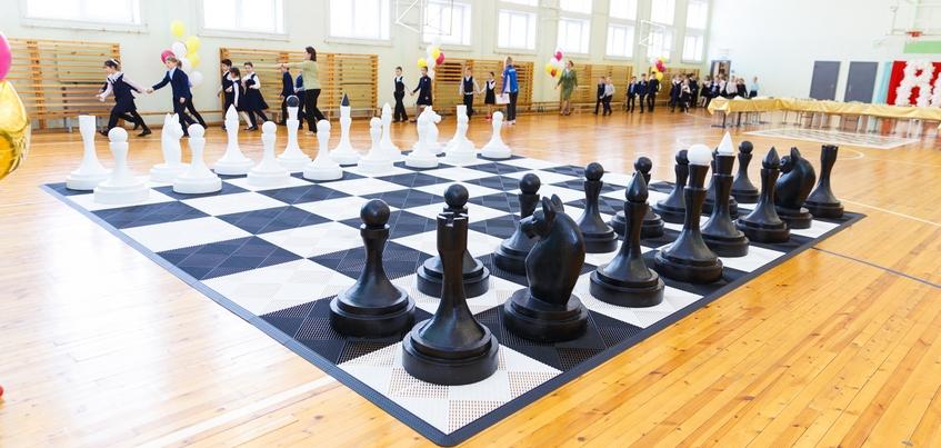 Все больше школ Ижевска вливаются в «умный спорт»