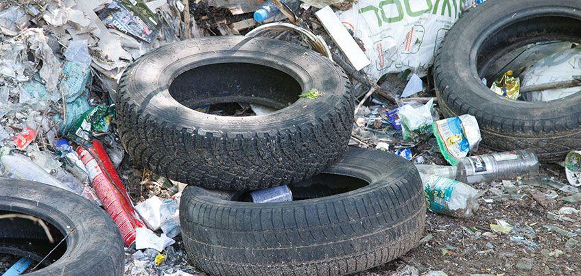Камеры фото и видеофиксации, контейнеры на прудах и новый график работы мусоровозов