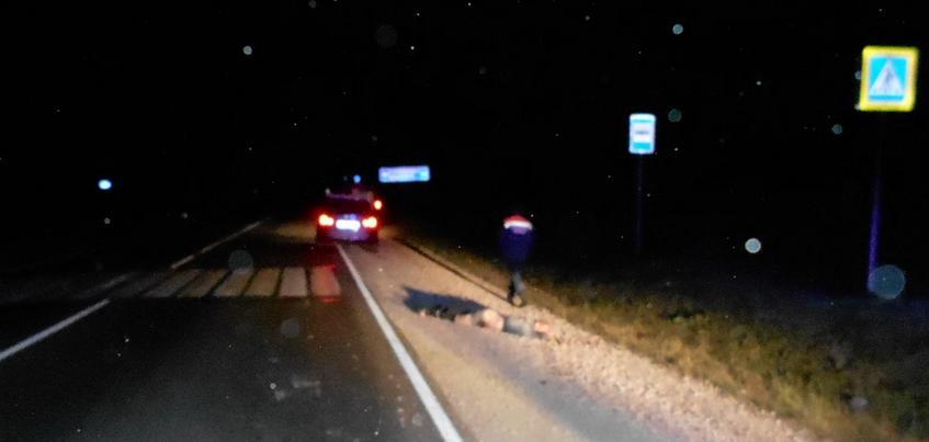 Пешехода насмерть сбили на трассе в Удмуртии