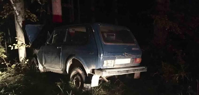 Два ребенка попали в реанимацию по вине пьяного отца в Удмуртии
