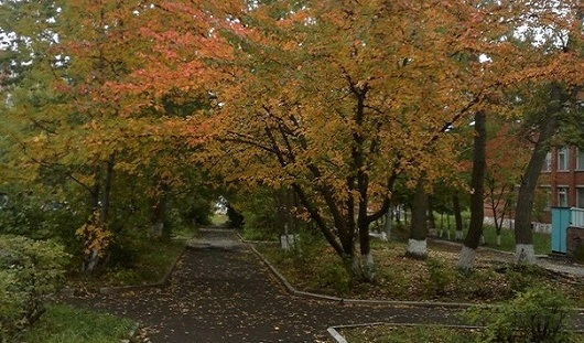 Другие «Бурановские бабушки» и осень в городе: о чем сегодня говорят в Ижевске