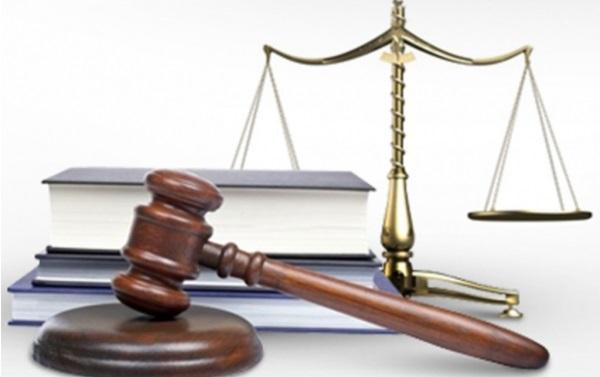 В библиотеках Ижевска можно получить бесплатные юридические услуги