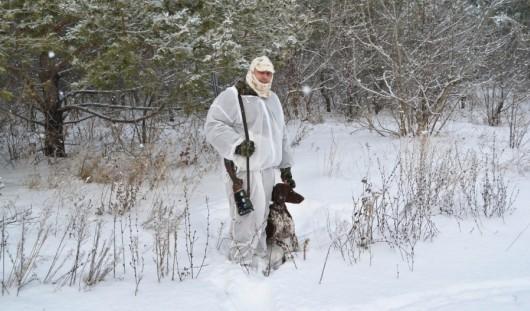 В Удмуртии открылся сезон охоты с собаками на лисиц и зайцев