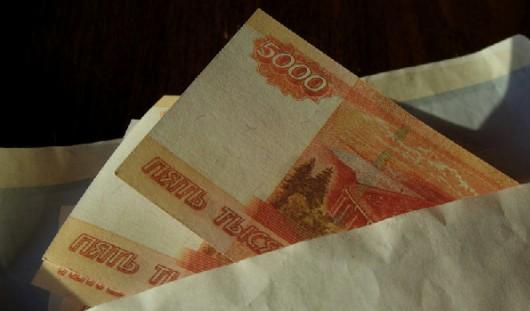 В Удмуртии депутат похитил более 65 тысяч рублей
