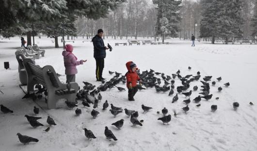 Россияне отдохнут 4 дня в ноябрьские праздники