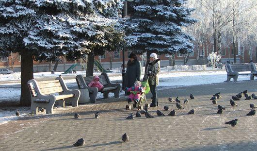 Небольшое похолодание ожидает ижевчан в первые дни ноября