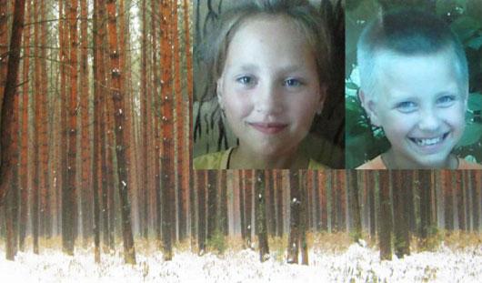 В Балезино найден подозреваемый в убийстве маленьких детишек
