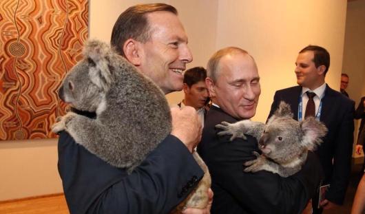 Австралийское «ми-ми-ми»: Владимир Путин сфотографировался с коалой на руках