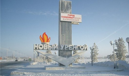 Ижевские скульпторы построят ледовый городок в Новом Уренгое