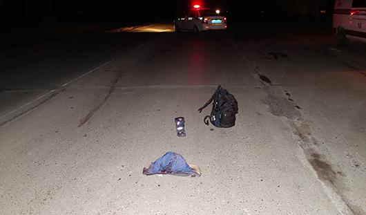 На трассе Ижевск - Сарапул под колесами легковушки погиб школьник