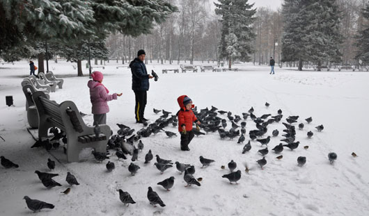 В выходные дни в Ижевске сохранится теплая погода