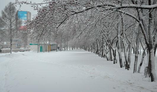 В выходные в Ижевске похолодает до -18 градусов