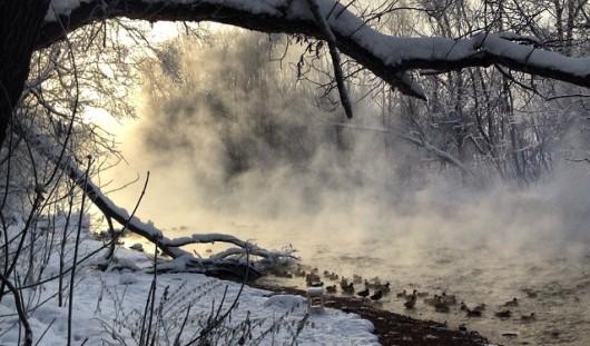 Фотоподборка: зима украшает Удмуртию