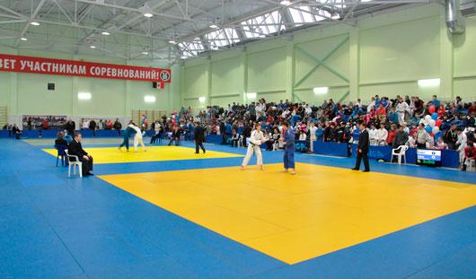 Гандбол, тхэквондо и каратэ - спортивные мероприятия для ижевчан на этой неделе