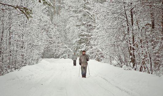 Какая погода ждет ижевчан в начале февраля?