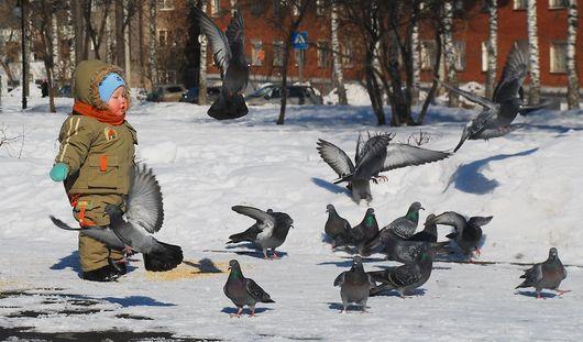Аномально теплая погода ожидается в Ижевске на этой неделе