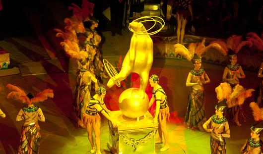 Цирковой фестиваль и концерт Шуфутинского: отдых для ижевчан со 2-6 марта