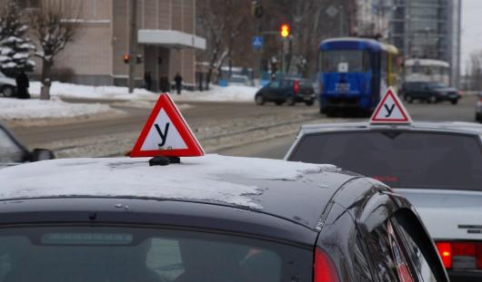 В России ученики автошкол при сдаче экзамена чаще всего не уступают дорогу пешеходам