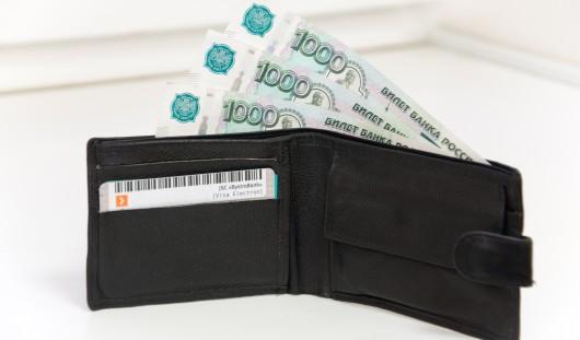 Житель Удмуртии заплатил почти полмиллиона рублей, чтобы выехать за границу