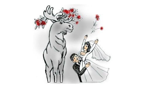Ижевская статистика: 41 пара поженилась, 41 - развелась