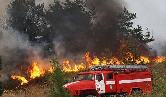 Могут ли лесные пожары в Забайкальске повториться в Ижевске этой весной?