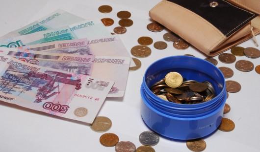Прожиточный минимум в Удмуртии увеличился на 1464 рубля