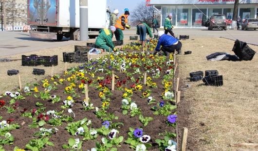 Первые клумбы с цветами появились в Ижевске