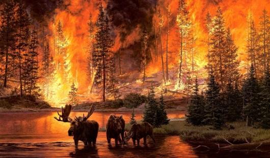 В лесах Удмуртии введен особый противопожарный режим