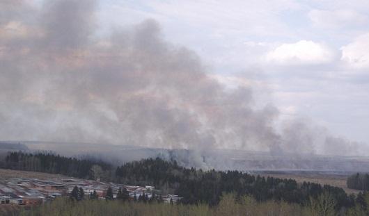 В пригороде Ижевска загорелась трава