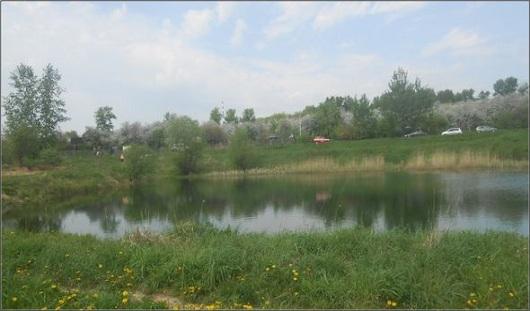 В Удмуртии в реке утонул 10-летний мальчик