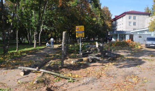 Вместо вырубленных деревьев на бульваре Гоголя в Ижевске появится парковка